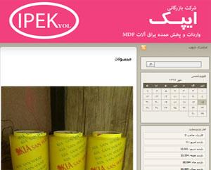 طراحی سایت گلستان